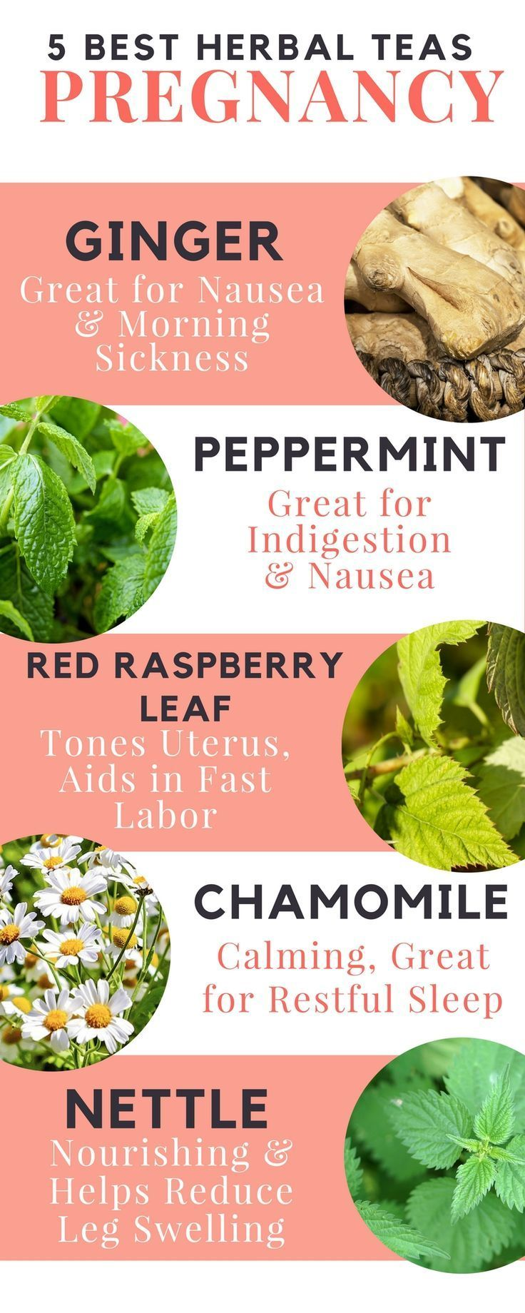 The best herbal teas for pregnancy. Helps fight against morning sickness, East burns …   – Healthy Pregnancy and Prenatal Exercise