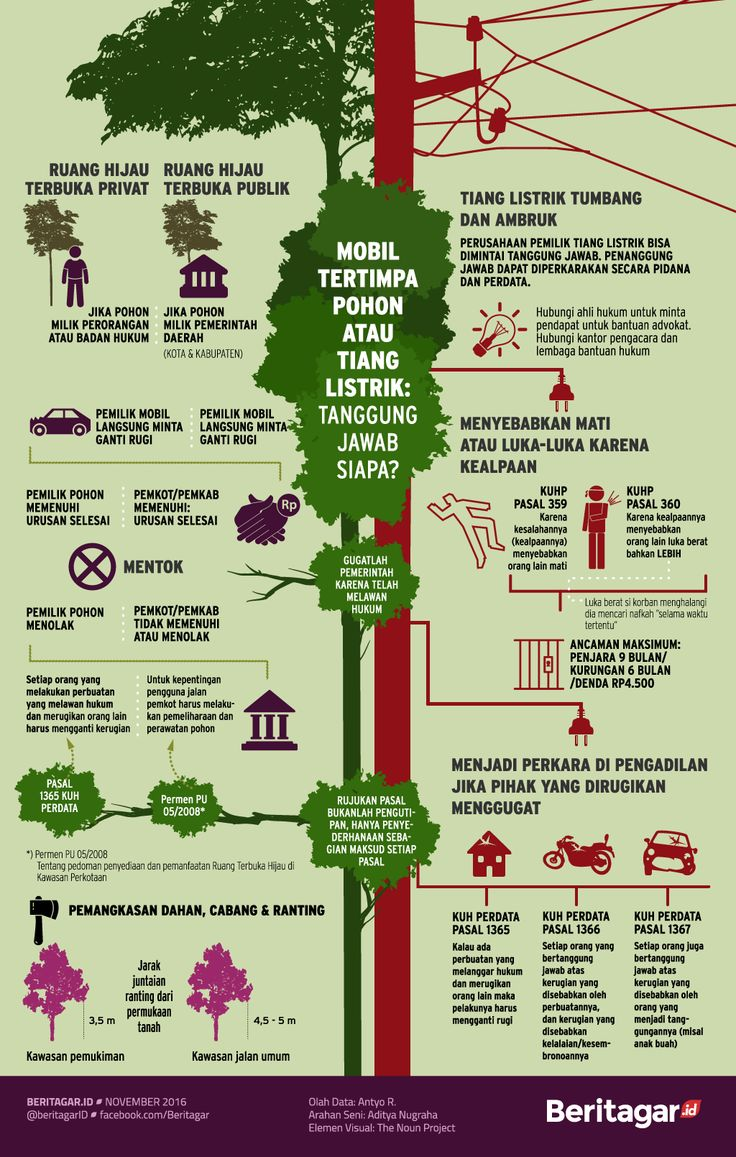 Ganti rugi karena ketiban pohon dan tiang - Merawat Indonesia