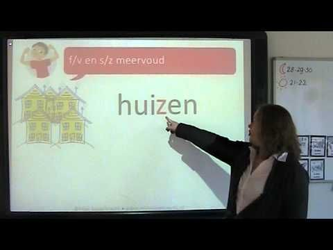 Spelling: f/v en s/z meervoud