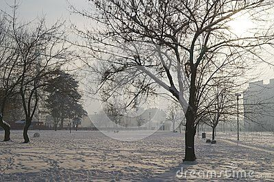 Winter landscape in park, Romania