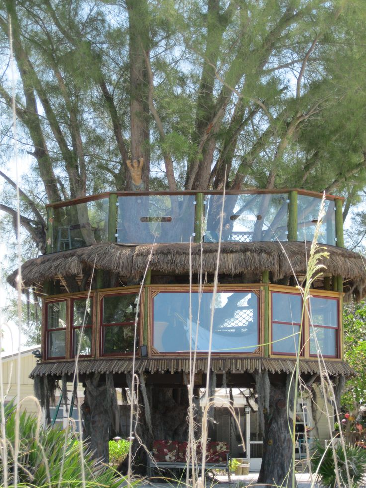 Tree House on the Beach (Anna Maria Island, FL).