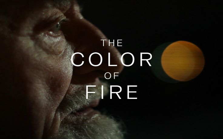 The Color of Fire: Personal Documentary of a Son of a Nazi Soldier - http://www.warhistoryonline.com/war-articles/the-color-of-fire-personal-documentary-of-a-son-of-a-nazi-soldier.html