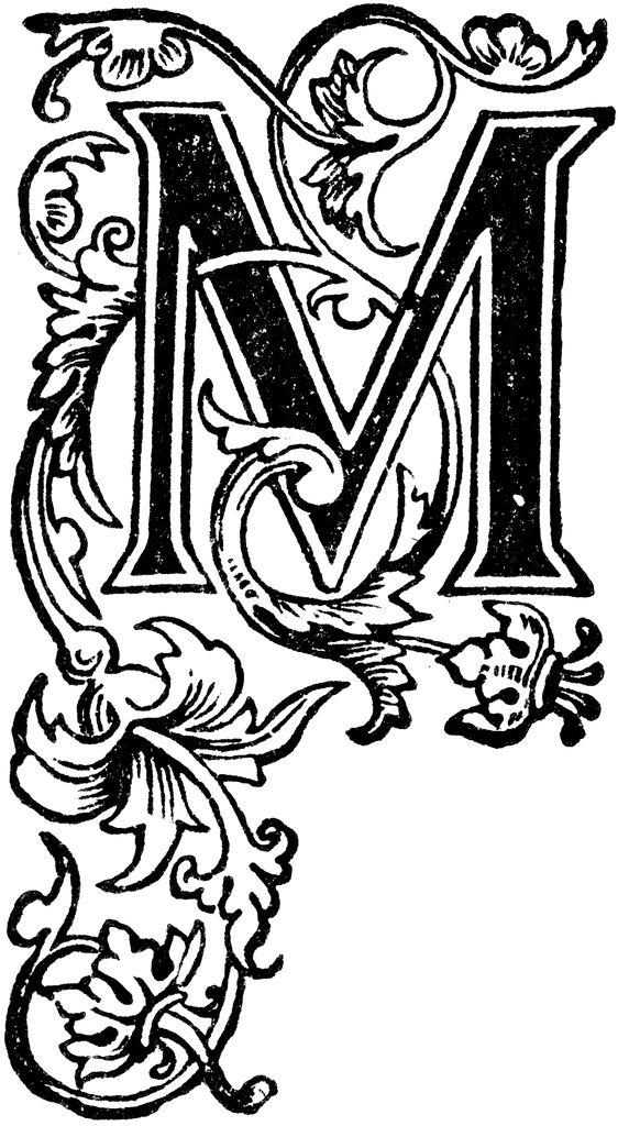 Floral Capital M Clipart Etc Calligraphy Pinterest