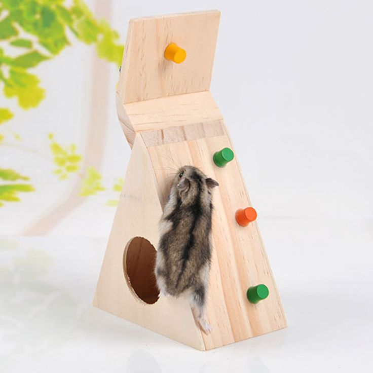 Multi Función de Hamsters Juguete Del Animal Doméstico De Madera Natural Colorido Divertido Juguete para Mascotas Rata Hámster Escalera de Asalto de Excelente Calidad en Jaulas y Accesorios de Hogar y Jardín en AliExpress.com | Alibaba Group