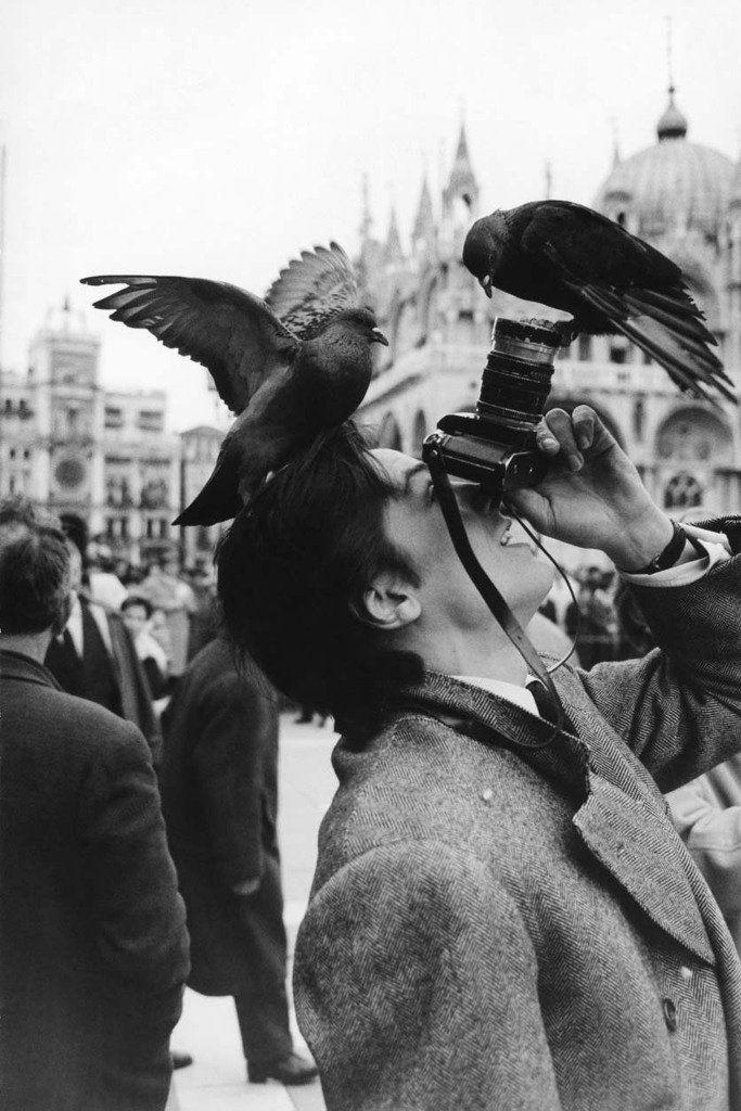 "history imageさんのツイート: ""アラン・ドロン、1962年 Alain Delon, 1962 https://t.co/KhKWd7CFF9"""