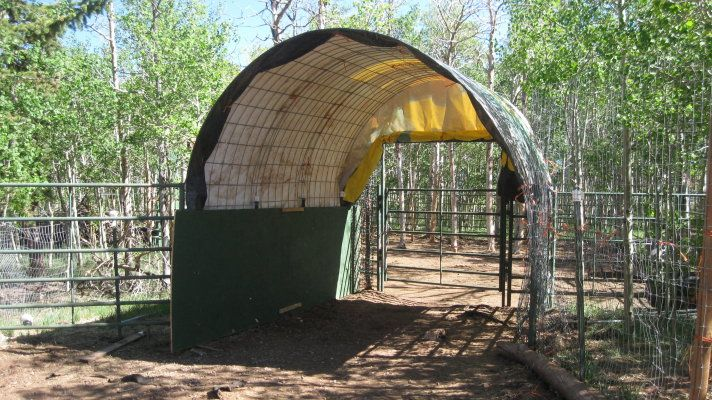 1000 Ideas About Simple Horse Barns On Pinterest Horse