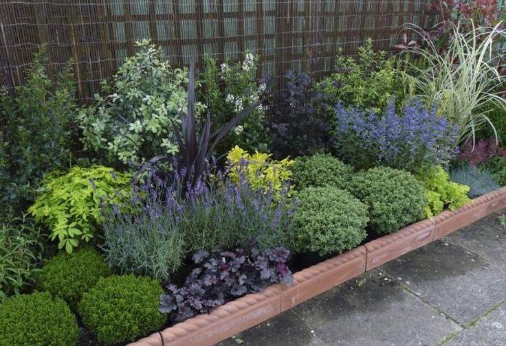 Les 25 meilleures idées de la catégorie Plantes de bordure ...