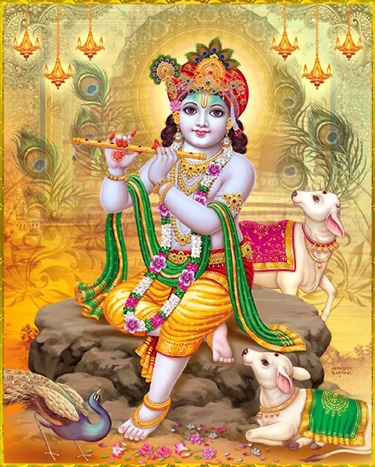 "☀ SHRI KRISHNA ॐ ☀ http://careforcows.org/ ""A fully surrendered devotee always hopes that Lord Krishna will be kind to him. This hope is very firm in him.""~Cairanya Caritamrta Madhya 23.28"