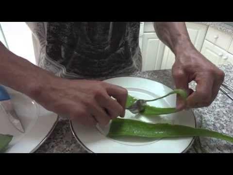 Zázrak přírody Aloe Vera - Recepty pro zdraví a pro krásu