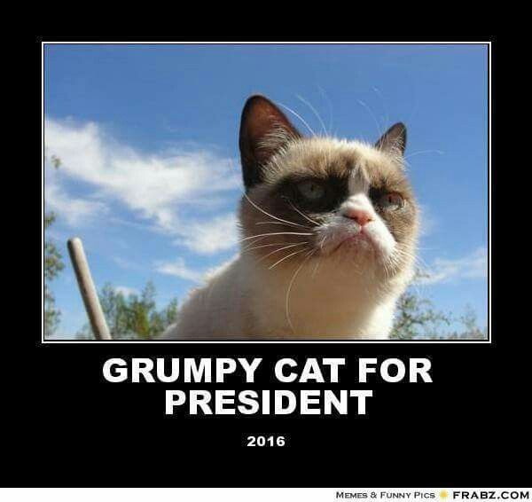 She's our best candidate by far! She will definitely get my vote.
