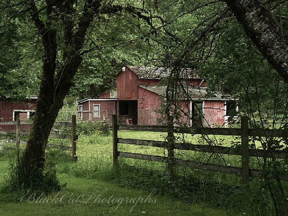 Country Home Decor Barn photograph rustic by