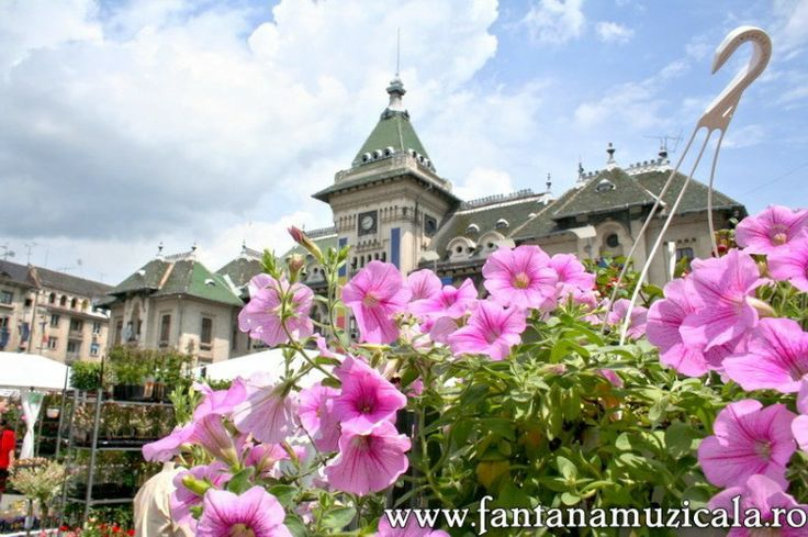 flowers festival Craiova 11 - From May 30 to June 2nd the entire Craiova City Center became the host for the Craiova Flowers Festival 2008. All the area near the musical fountain was inundated with flowers and decorative objects. Hosted by www.iCraiova.com