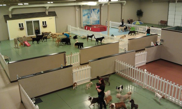 Perrysburg and Sylvania Ohio Dog Boarding Daycare Services