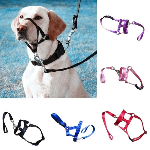 New Soft Dog Collar Multifunctional Pet Dog Head Collar Gentle