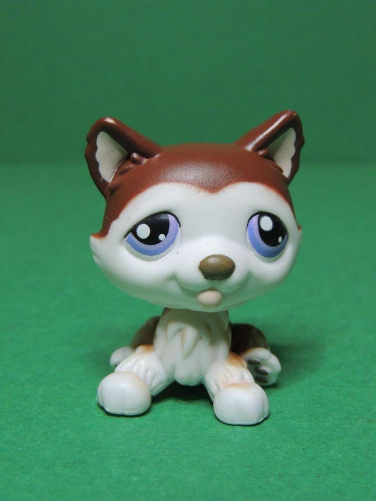 #427 chien dog brown & white Husky Purple eyes LPS Littlest Pet Shop Figurine