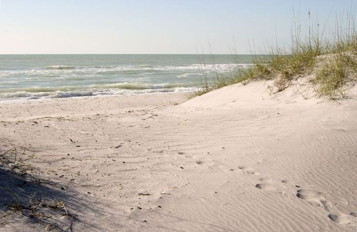 Top 8 Tampa Bay Area Beaches