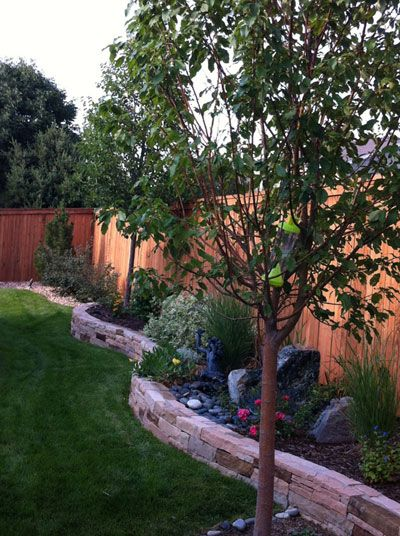 25 best ideas about small retaining wall on pinterest for Small area planting ideas