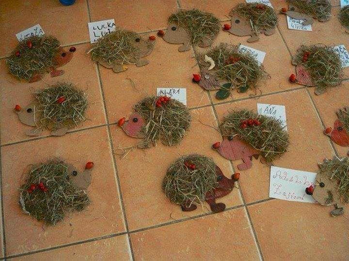 tažením myši posunout fotku