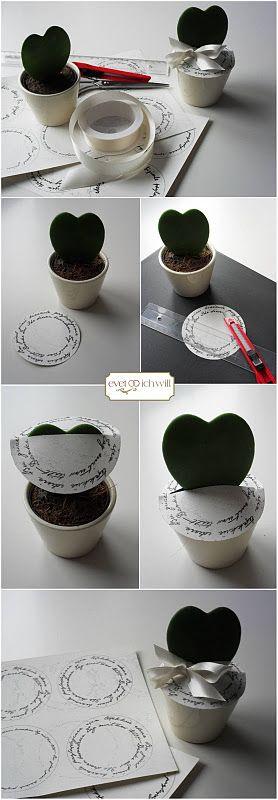"""DIY wedding favor or seat card with """"hoya kerrii"""" better known as heart plant :)    #gastgeschenk #tischkarten #druckvorlagen"""