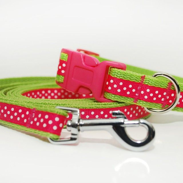 Obojek a vodítko Blackberry | Collar and leash by Blackberry #leash #collar #pink #green #colors #dog #handmade #blackberry #obojek #voditko #ruzova #zelena #rucni_vyroba