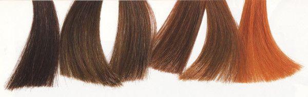 Цвета волос осеннего цветотипа