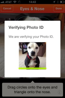 Finding Rover app tracks lost dogs using facial recognition -- this is SO smart, especially considering how fast lost dogs can get dirty and look different!
