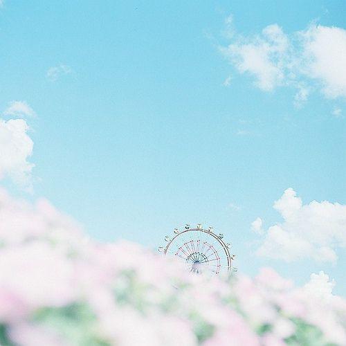 dream world*