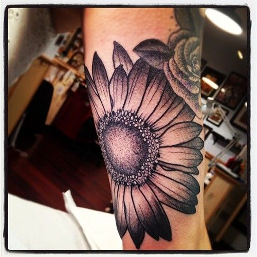 black and gray gerbera daisy tattoo. Not this big or this location but I love daisies