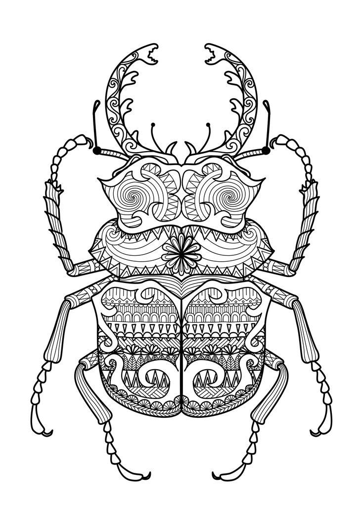Sublime Scarabée à colorier, plein de motifs incroyablesA partir de la galerie : ZentangleArtiste : Bimdeedee, Source :  123rf