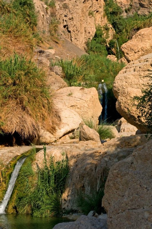 Ein Gedi Springs - an amazing oasis of waterfalls and pools on the shore of the Dead Sea in Israel