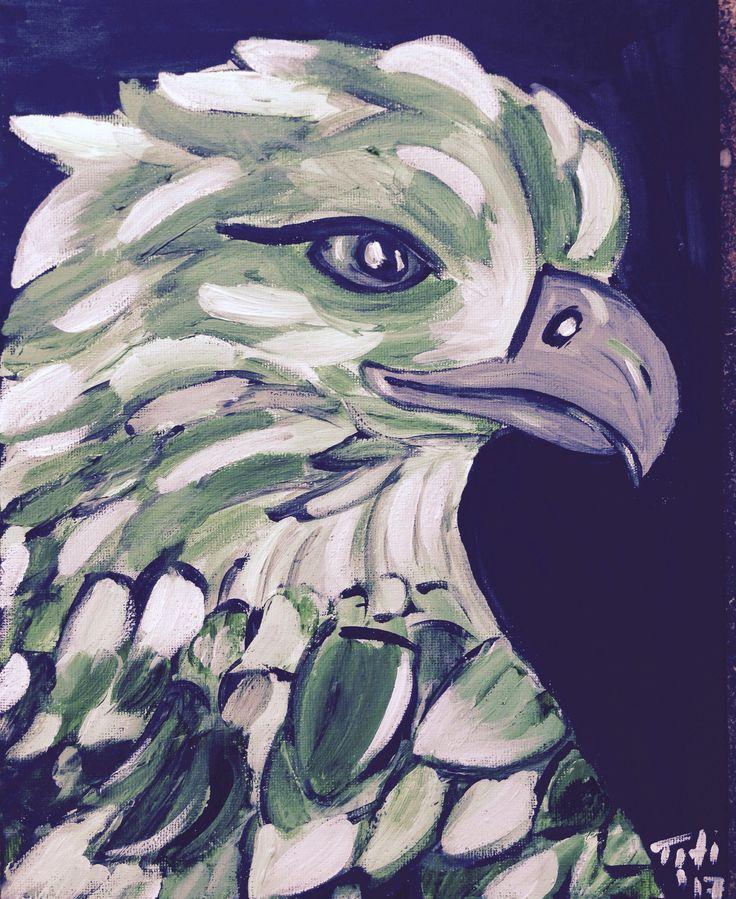 fradi eagle :-)