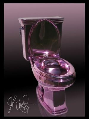 All Things Purple   Purple Chrome Toilet... Wow. by june
