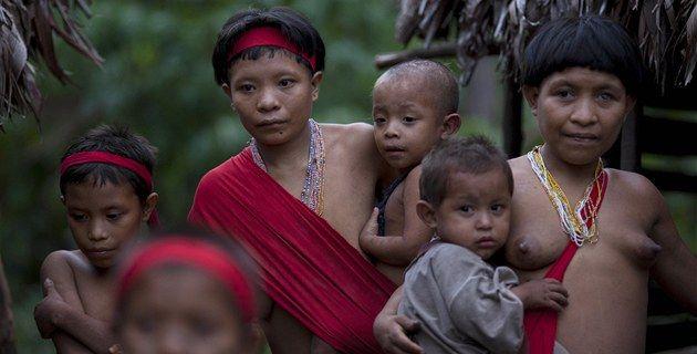 Válečné barvy na tvářích, šípy a bojové pokřiky brazilských indiánů střídá Facebook a vysokoškolské vzdělání. Amazonští domorodci dnes brání odkaz svých předků sofistikovaným způsobem a zdá se, že získávají větší podporu z vnitrozemí.