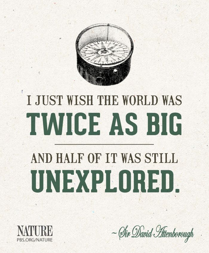 A quote from Sir David Attenborough. What sort of land would you like to find if you were an explorer?