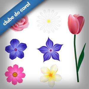 Modelos Flores Vetorizadas   Clube do Corel