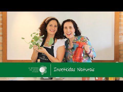 Vídeo da Semana: Inseticidas Naturais e Adubação Orgânica | A Menina do Dedo Verde