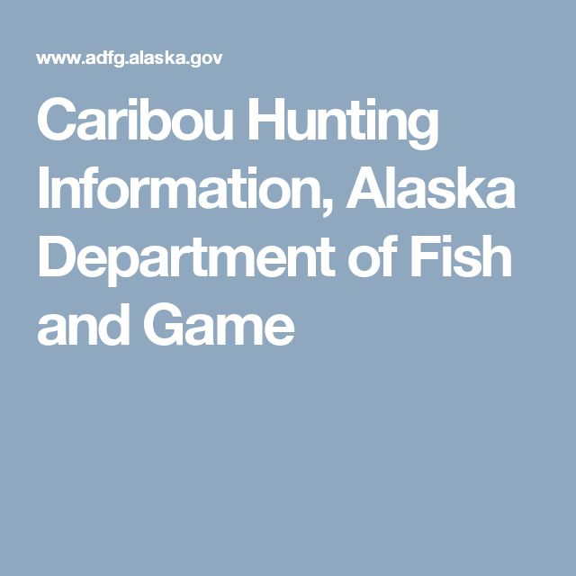 Caribou Hunting Information, Alaska Department of Fish and Game