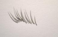 How to Draw Eyelashes