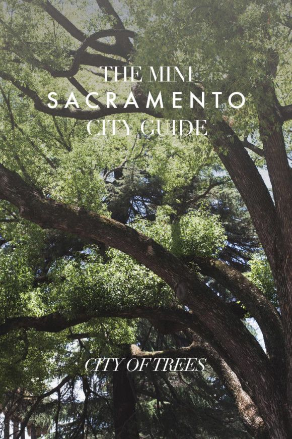 The Mini Sacramento City Guide