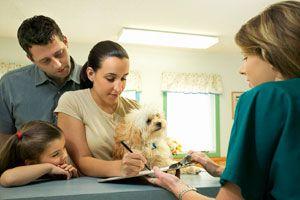Health - Pet Health Insurance 101