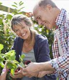 Shop Monrovia (mk) Jennifer Blankenship Dream Gardens LLC Rochester Hills, MI 248.980.8719 Landscape Design