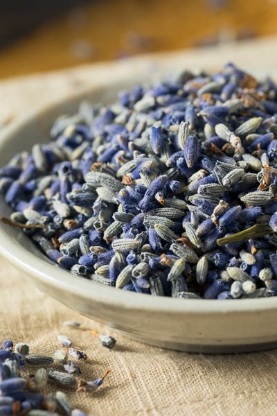 Lavender Flower by Spice and Tea Exchange