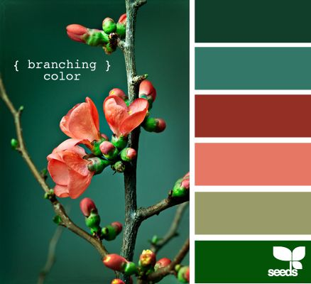 branching color palette from design-seeds.com. Maybe take a b/w picture of flowers and colorize it in Photoshop to match the palette I like?