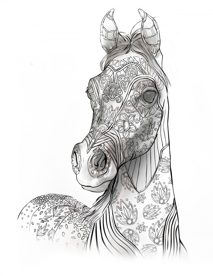 adult coloring book page beautiful stallion for adult coloring to download selah works