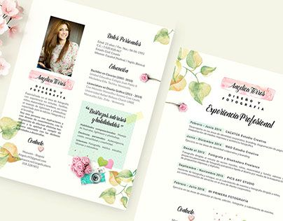 Best Visual Resume Images On   Creative Curriculum