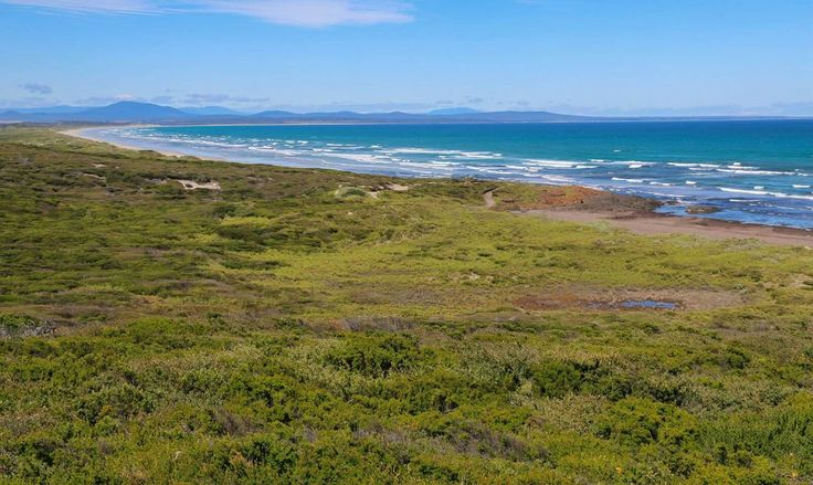 You can take the city any day, I'll stick to this.   #beach #view #outdoors #tasmania #photography #photo #ocean #tassie