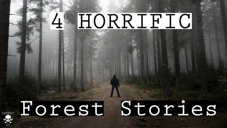 4 TRUE Scary Forest Stories