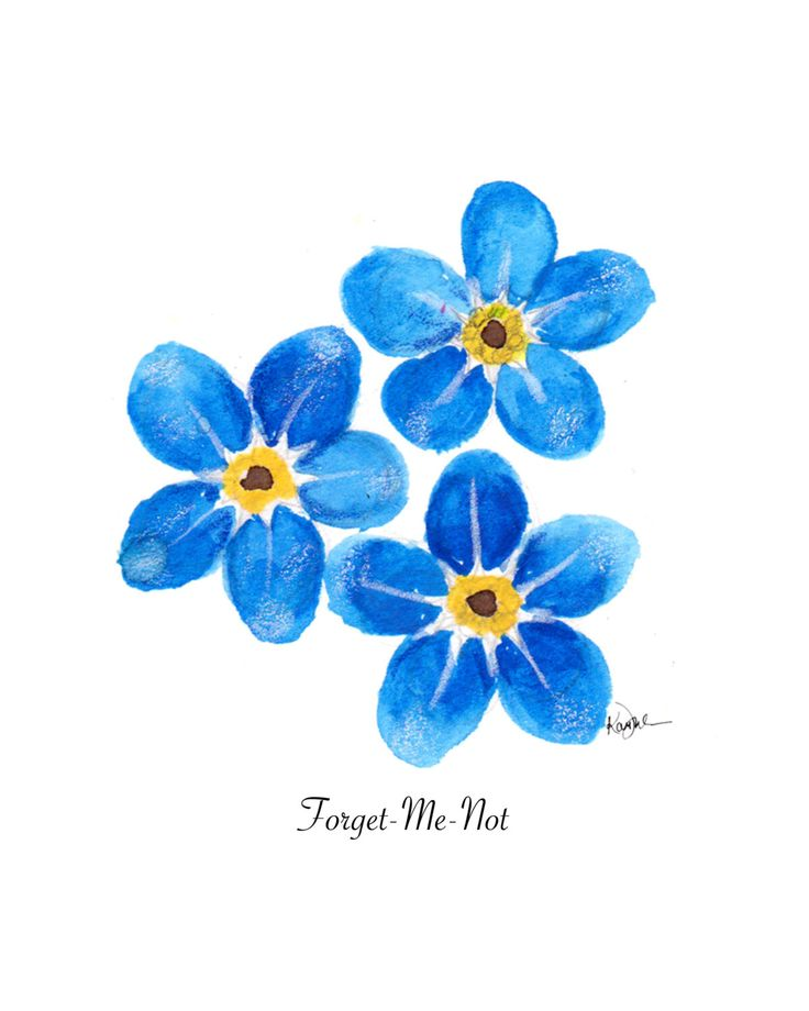 Floral Illustration, Watercolor Painting print: Forget Me Not, Chic Wall Art, Blue Home decoration by KariSketches on Etsy https://www.etsy.com/listing/265174020/floral-illustration-watercolor-painting