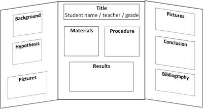 middle school science fair board layout you may arrange this information on your poster board. Black Bedroom Furniture Sets. Home Design Ideas