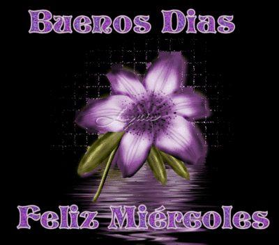 Flor violeta: Buenos Días y Feliz Miércoles